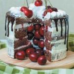 торт с сюрпризом_черный лес